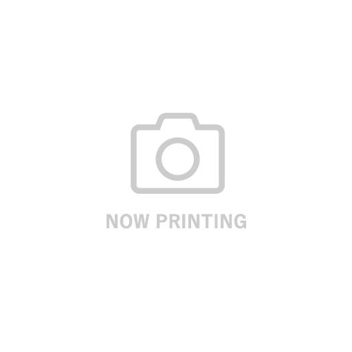 ピクニックテーブルセット ブラウン(クッション付)